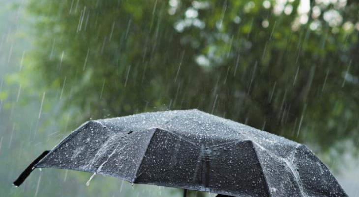 Жара и дождь: синоптики рассказали о погоде во Владимире