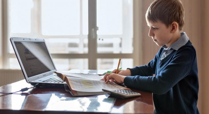 Осенью школьники все еще будут учиться на дому?