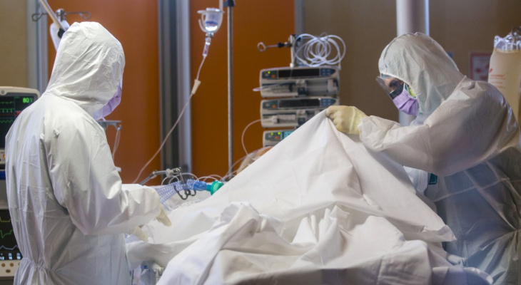 Ещё два жителя Владимирской области умерли от коронавируса