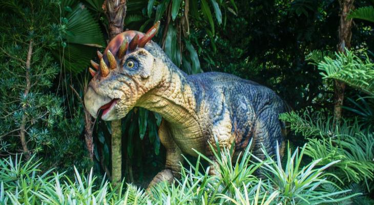 Мы запускаем новый фотоконкурс для всех, кто обожает динозавров
