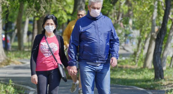 Коронавирус во Владимирской области: заразились еще 33 человека