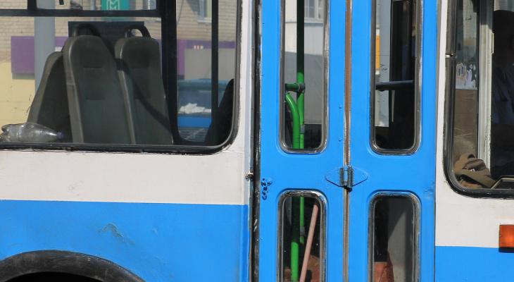 Во Владимире водитель троллейбуса захлопнула дверь перед носом пассажиров