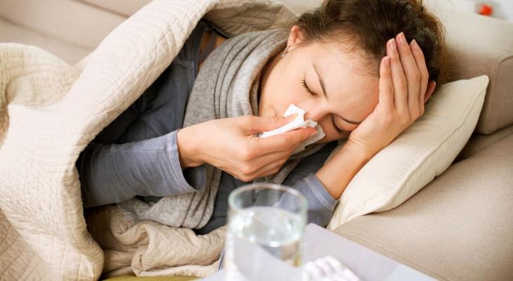 Простуда, защищайся! Что поможет владимирцам встретить осень во всеоружии