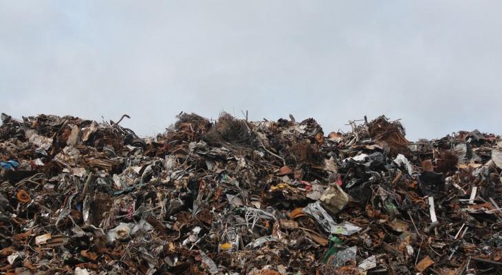 Московский мусор будут официально завозить во Владимирскую область