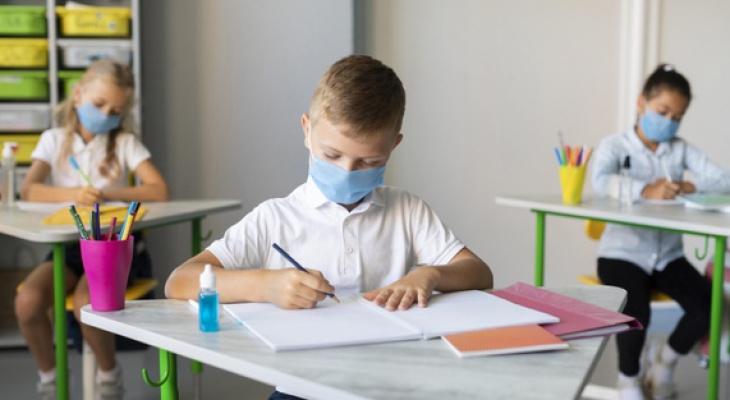 Школьников Владимирской области не планируют переводить на дистанционку