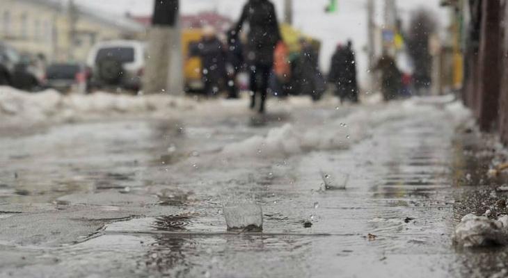 Синоптики: во Владимир придёт кратковременное потепление