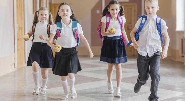 Школьники Владимирской области завтра сядут за парты