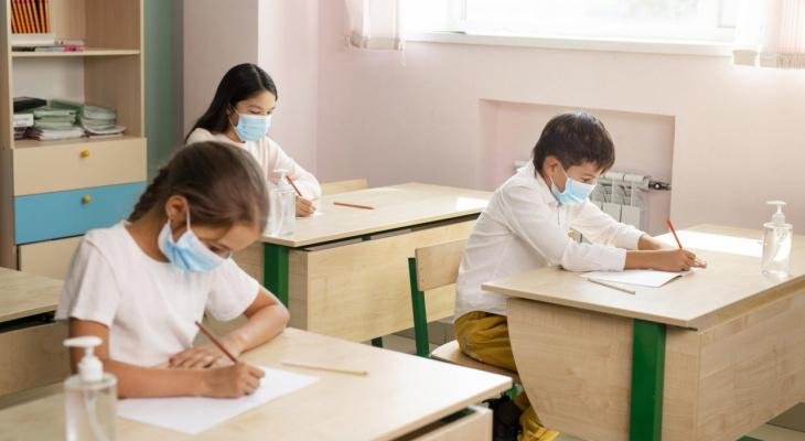 В школах Владимира началась новая учебная четверть