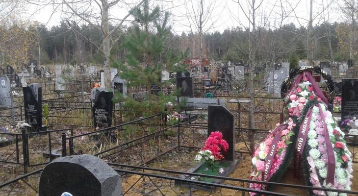 Во Владимирской области на фоне пандемии резко выросла смертность