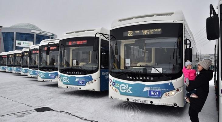 Владимирские Волгабасы начнут обслуживать маршруты в Омске