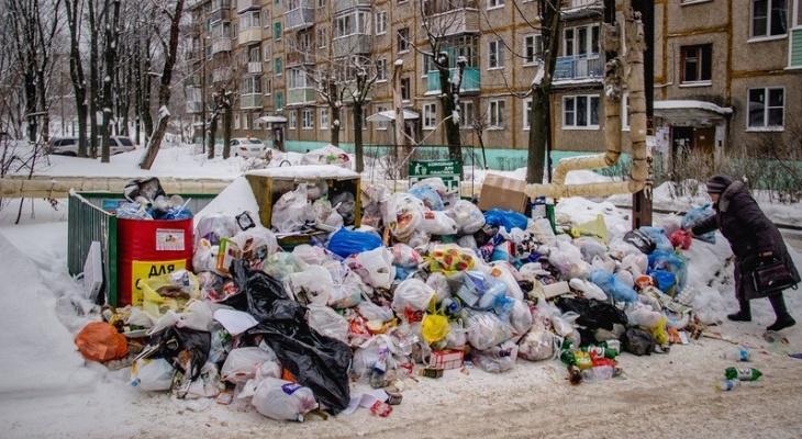 """Горожане: """"Во Владимире уже несколько дней не вывозят мусор!"""""""