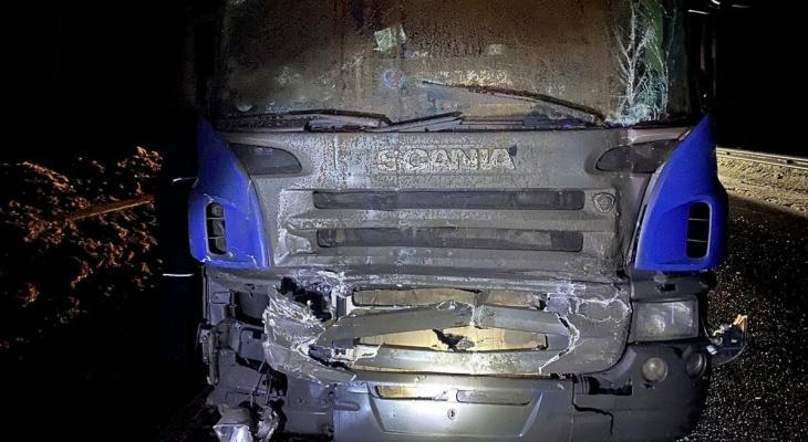 Три человека погибли на дорогах Ковровского района этой ночью