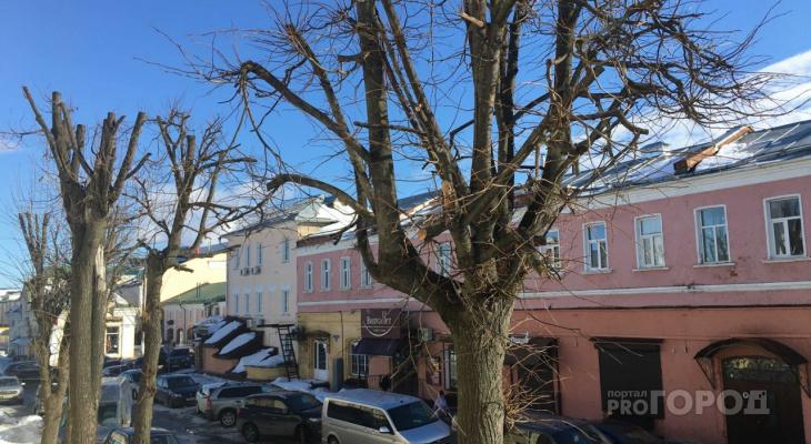 Праздничные выходные во Владимире обещают быть морозными