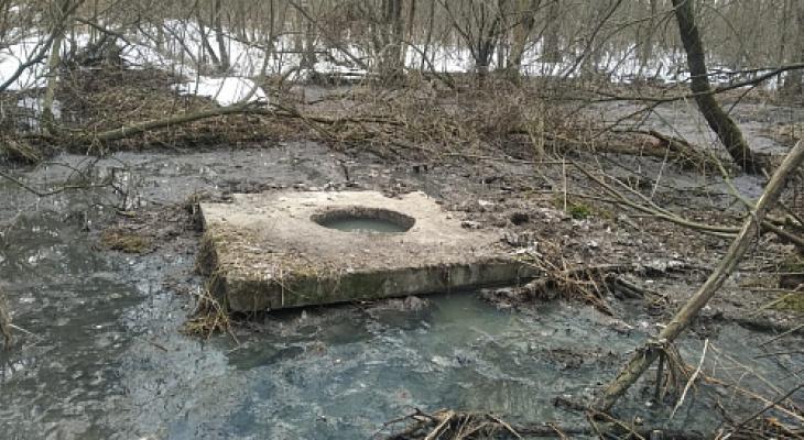 Росприроднадзор подтвердил загрязнение реки Нерль у посёлка Сокол