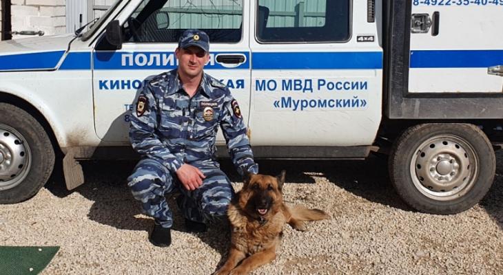 """""""Комиссар Рекс"""" по-владимирски: собака помогла поймать магазинного вора"""