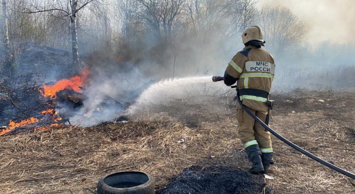Площадь травяных пожаров во Владимирской области превысила тысячу гектаров