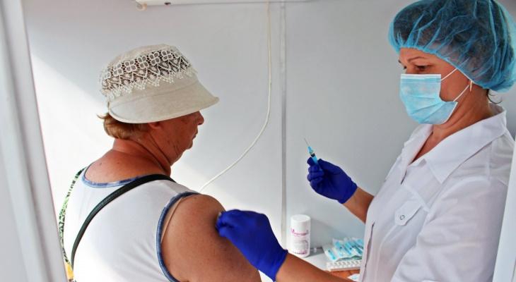 Во Владимире и Александрове открылись новые прививочные пункты