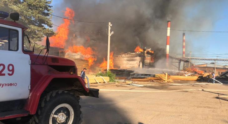 Крупный пожар уничтожил деревообрабатывающую фабрику в Струнино