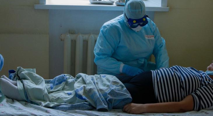 85 новых случаев коронавируса зафиксировано во Владимирской области