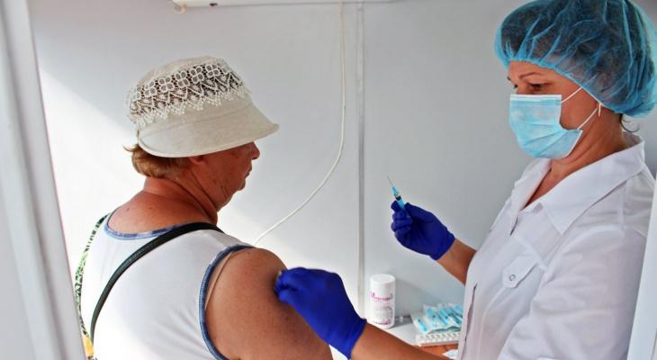 Каждый пятый в России одобряет обязательную вакцинацию. Что думают владимирцы?