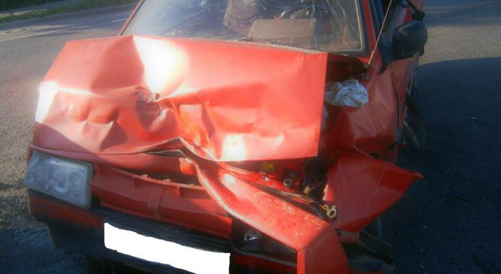 За сутки на дорогах Владимирской области погибли 2 мотоциклиста и 2 лося