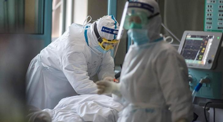 231 житель Владимирской области заразился коронавирусом за сутки