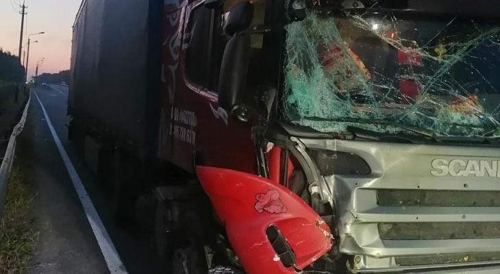 В Камешковском районе столкнулись два грузовика: есть пострадавшие