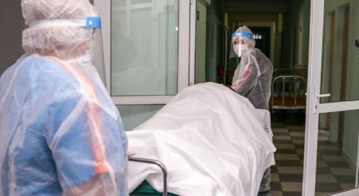 Во Владимирской области за прошедшие сутки от COVID-19 умерли 8 человек