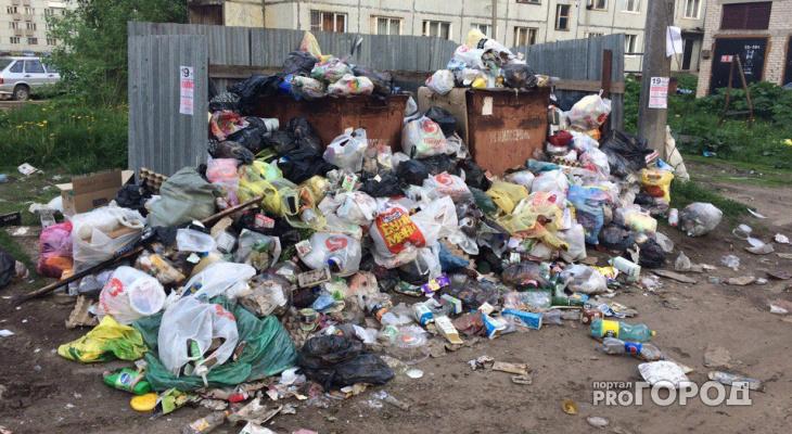 Во Владимирской области меньше половины всех мусорных площадок признали чистыми