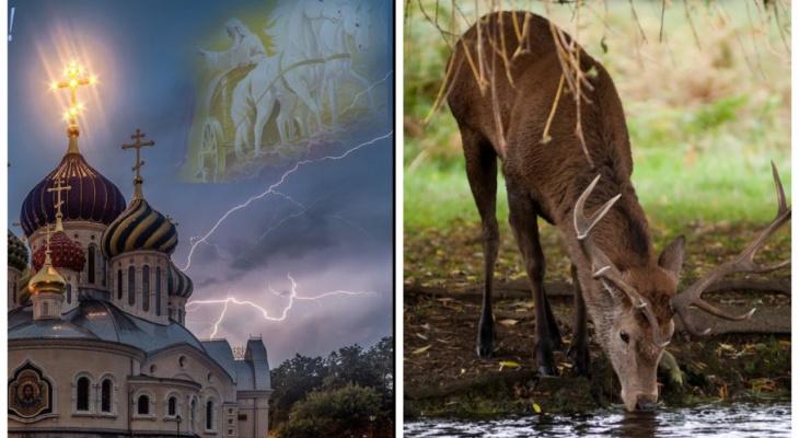Почему Илья-Пророк два часа уволок, а олень рога в воду опустил?