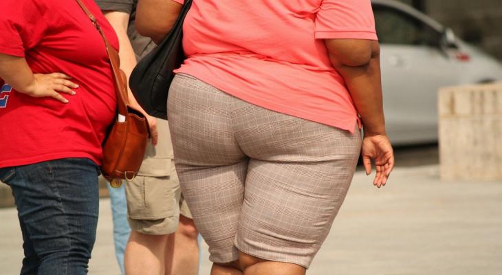 Кровь-толстушка: люди с этой группой крови склонны к ожирению