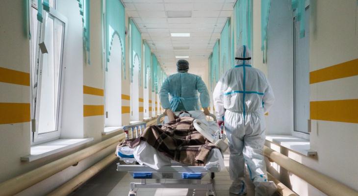 За сутки 203 жителя Владимирской области заразились коронавирусом