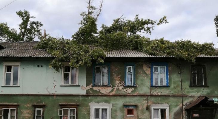 Жуткие последствия урагана в Киржаче