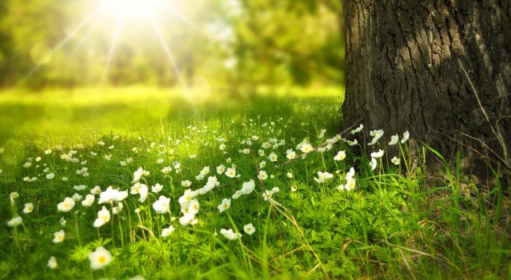 Последний месяц лета: что нужно успеть сделать, пока еще тепло