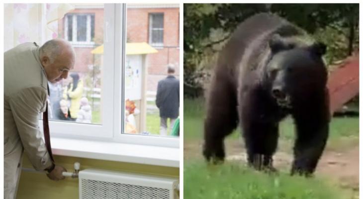Для тех, кто пропустил: дата начала отопительного сезона и встреча с медведем