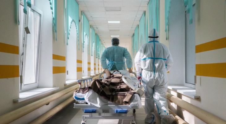 156 жителей Владимирской области заразились COVID-19 за сутки